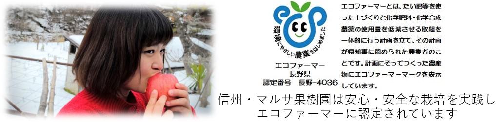 エコファーマー|長野県産りんご|通販|減農薬|