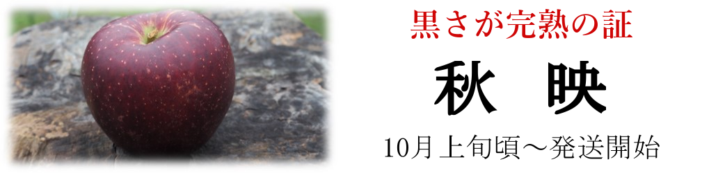 秋映|長野県産|マルサ果樹園|減農薬