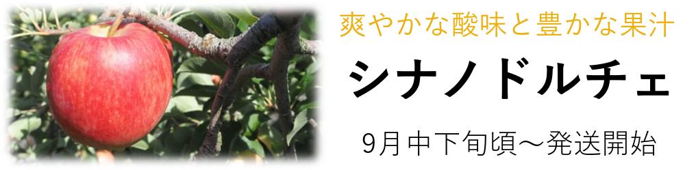 減農薬|シナノドルチェ|りんご通販|長野